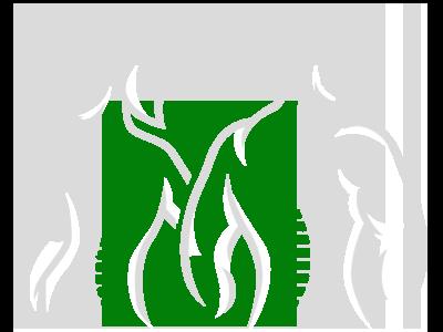 Chiropractic Clinton Township MI Spine Figures